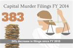 Capital Murder Filings FY14 Icon