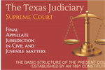 Texas Judiciary FY 14 Icon